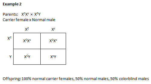 Worksheets Sex Linked Punnett Square Worksheet aisbiology licensed for non commercial use only mendelian genetics crosses with sex linked traits